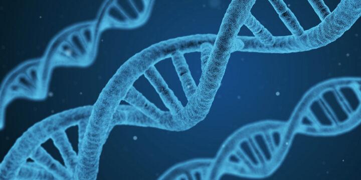 tipologie-Test-DNA